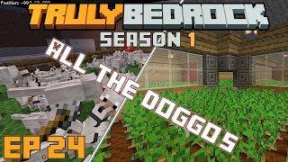 Truly Bedrock s1e24 The massive potato farm and getting Tizztom all the doggos