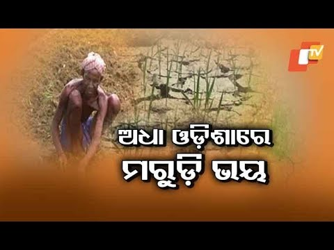 Sans Adequate Rainfall, Several Places In Odisha Stare At Possible Drought