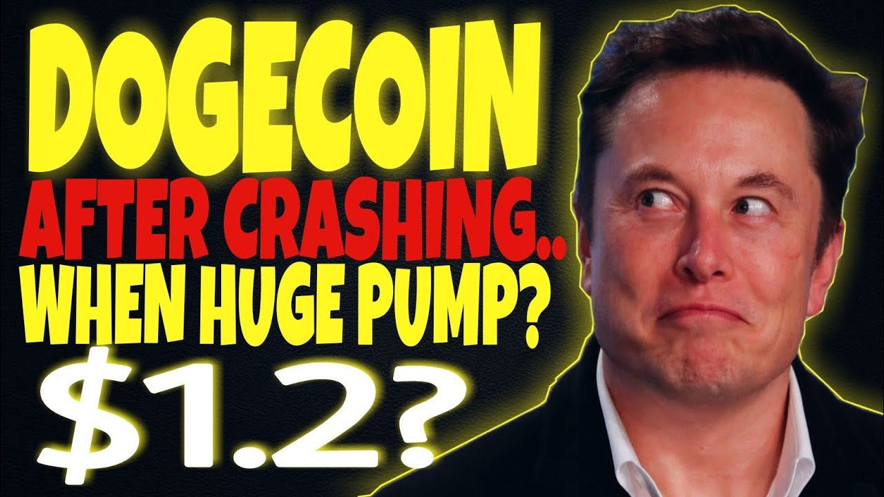 DOGECOIN NEWS: HUGE PUMP COMING SOON WITH WHALES ...