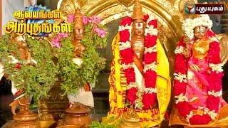 Sri Kodandapani Ramar Temple, Ayodhyapattinam   Aalayangal Arputhangal   04/08/2016   Puthuyugam TV
