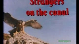 Look and Read - Sky Hunter 1. Strangers on the Canal