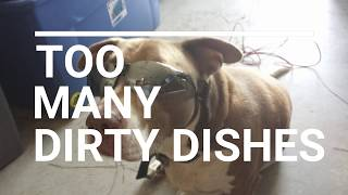 DIRTY DISHES   BBQ PIT DOG'S HOUSE   TURN UP THE VOLUME