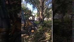 Hurricane Irma 2017 Cleanup - Quail Ridge, Seminole Florida