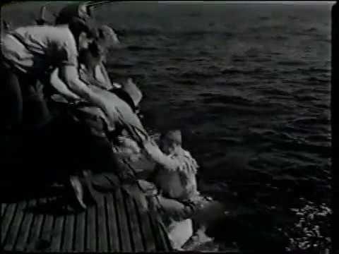 Submarine Command 1951 War Movie William Holden, Don Taylor, Nancy Olson