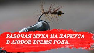 Рабочая муха на хариуса в любое время года