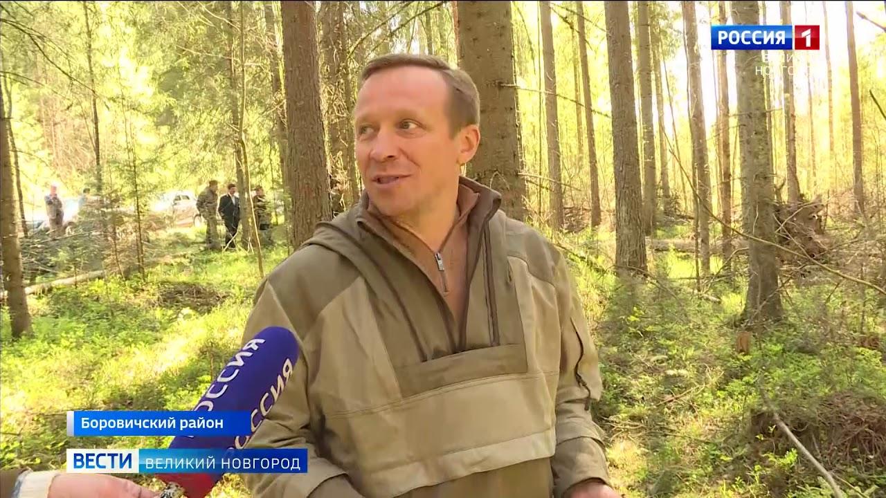 ГТРК СЛАВИЯ Таксация леса в Боровичах 02 06 20 - YouTube