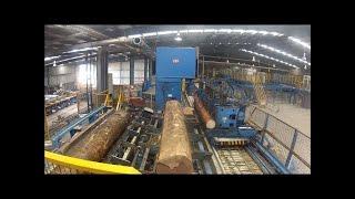 Amazing Wood Firewood Processing Machine, Automatic Modern Technology Fast Easy Cutting Big Tree