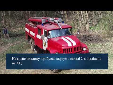 ЛДУ БЖД: Спільні пожежно-тактичні навчання ЛДУ БЖД та НЛУУ