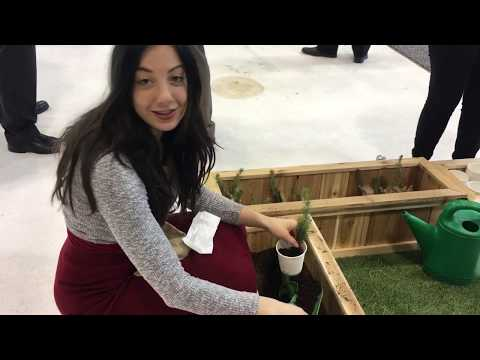 Exploring The 2019 Green Living Show In Toronto
