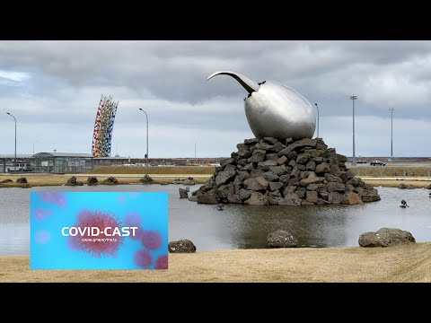 COVID-Cast #19: Iceland's International Airport And Stimulation Pack