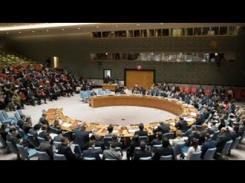 UN Security Council holds emergency meeting over Iran
