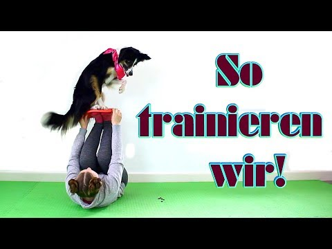 So Trainieren Wir!    Uncut bungseinheit    JJ Trickdogjunkies