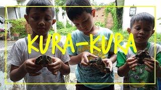Pelihara Kura-kura di Rumah