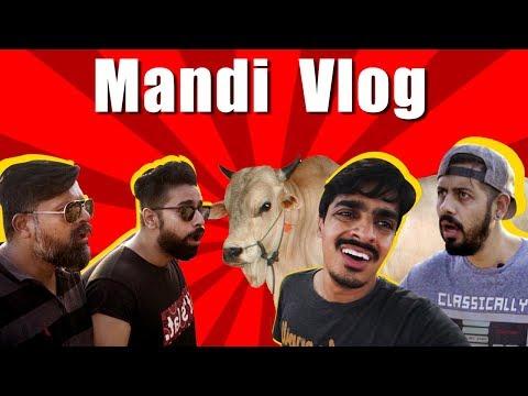 Mandi Vlog | Funny | Bekaar Vlogs