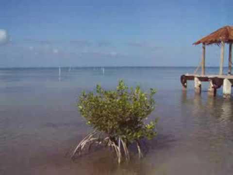 playa del parador de Bahia Salinas puerto Rico