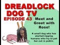 Episode 43   Meet and Greet with Rose!