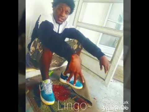 Oboi Turk - Lingo (Audio Only)