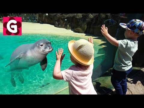 Thumbnail: KIDS Family Trip to Animals Rainforest ZOO / Baby Playing at Zoo / Learn Wild Animals for Kids