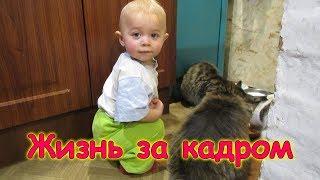 Жизнь за кадром. Обычные будни. (часть 175) (11.18г.) Семья Бровченко.