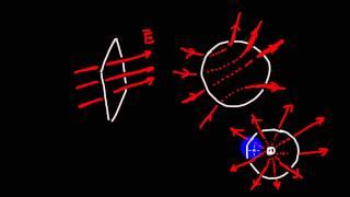 Электростатика | закон Гаусса для электрического поля | 1