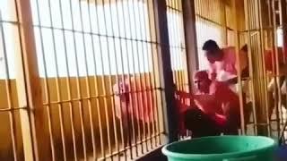 Prison break in Brazil