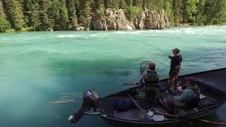 Upper Kenai River Fishing