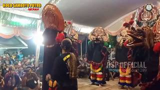 Download lagu WIWIT AKU ISIH BAYI full SOLAH PEMBARONG KONDANGNYA ROGO SAMBOYO PUTRO voc Dinda 1289