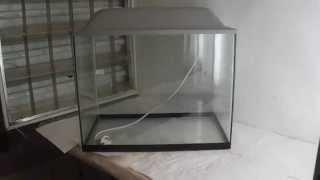 купить аквариум(купить аквариум можно тут https://www.avito.ru/nizhniy_novgorod/akvarium/akvarium_35_litrov_442766426 http://zooelen.ru посмотреть прайс и связаться..., 2015-02-21T08:50:23.000Z)