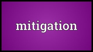 Mitigation Meaning