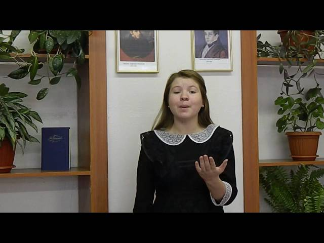 Изображение предпросмотра прочтения – ЭльвинаНизамова читает произведение «О да! Я — темный мотылек…» В.Я.Брюсова