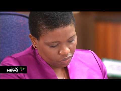 Mokgoro Enquiry | Willie Hofmeyr under severe cross-examination