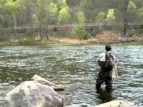 The beaverkill fly fishing youtube for Roscoe ny fishing