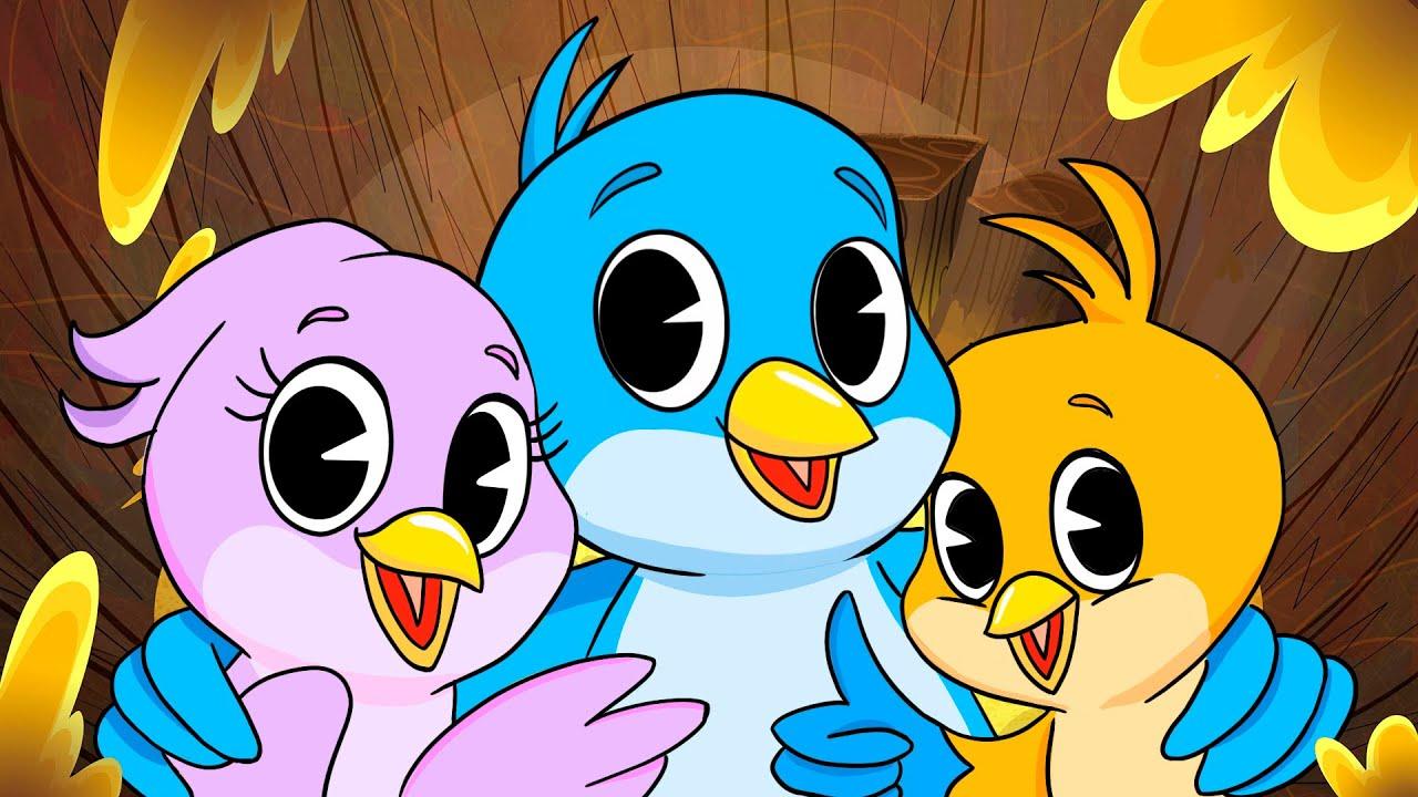 The Colorful Birdie   Kids Song   Clap clap kids