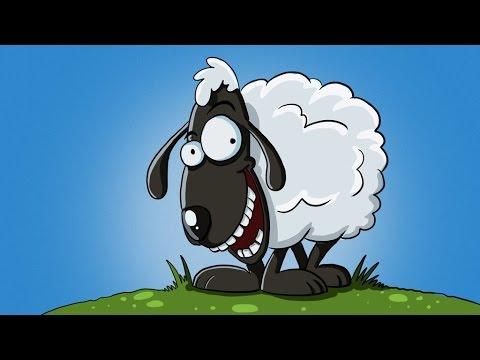 dibujos animados de ovejas, dibujos de animales, dibujos para los niños