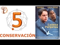 Eneatipo 5 CONSERVACIÓN subtipo - EJEMPLO - Por Jordi Pons