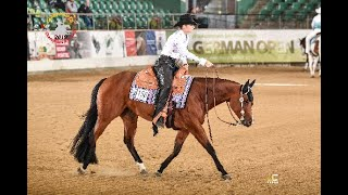 German Online Open - Youngstars (Challenge und Reining)