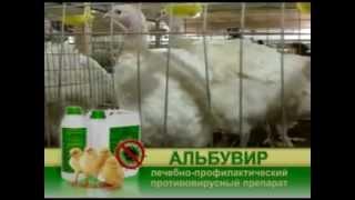 противовирусный препарат Альбувир
