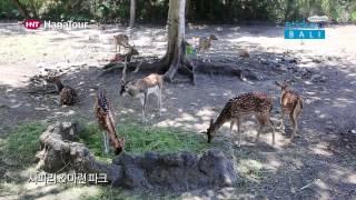 [발리여행] 사파리&마린파크 / Safari &…