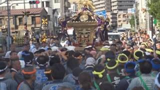 平成28年 墨田<小村井・香取神社>例大祭【喧騒】本社神輿渡御=明治通り