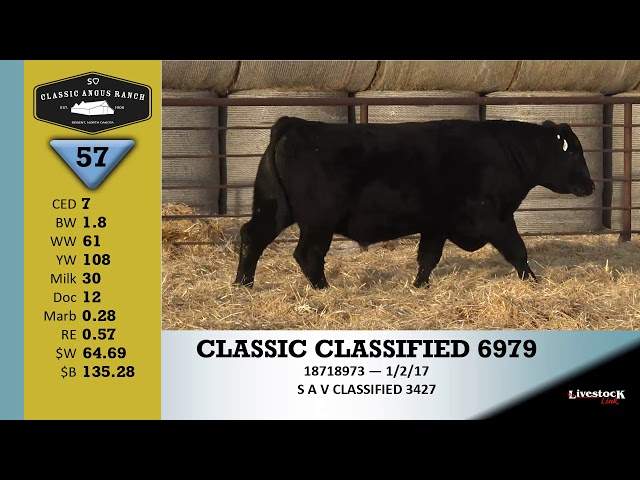 Classic Angus Ranch Lot 57