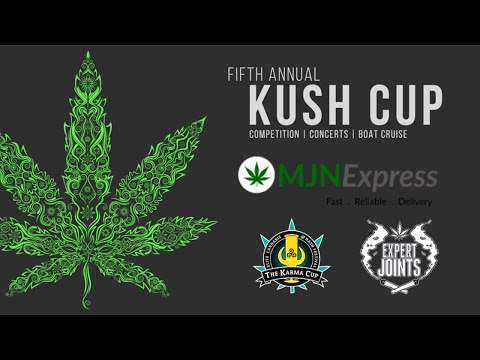 EXPERT JOINTS LIVE! -