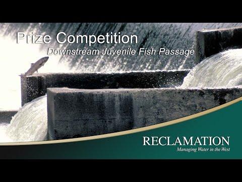 Downstream Juvenile Fish Passage Prize Competition