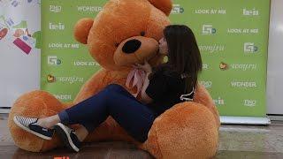 Где купить большого плюшевого медведя в екатеринбурге(, 2014-11-22T12:10:04.000Z)