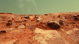 Mars And Meteorite And Opals: Signs Of Life?