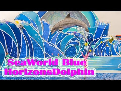 SeaWorld Blue horizons Dolphin Show|Ocean Park Hong Kong