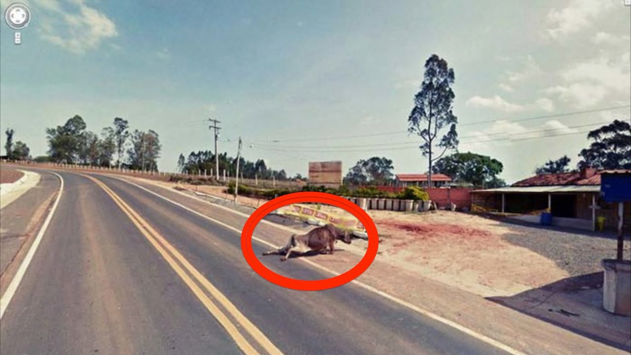 Strange Pictures Found On Google Maps