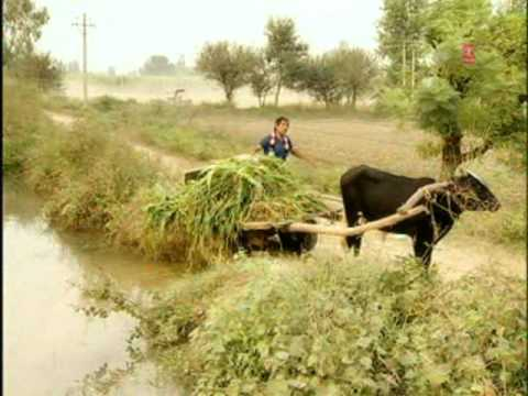 Fas Gayi Reda [Full Song] Bhotu Shah Ji Zindabad
