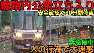 【線路内立ち入り】JR京都線223系普通列車 防護無線受信で緊急停車から運転再開までの一部始終