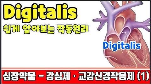 강심제 응급실약물 중 식은땀흘리게 만들었던 약물 쉽게 알아볼까요~^^