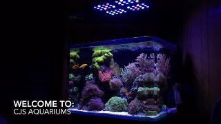 welcome to cj s aquariums channel trailer